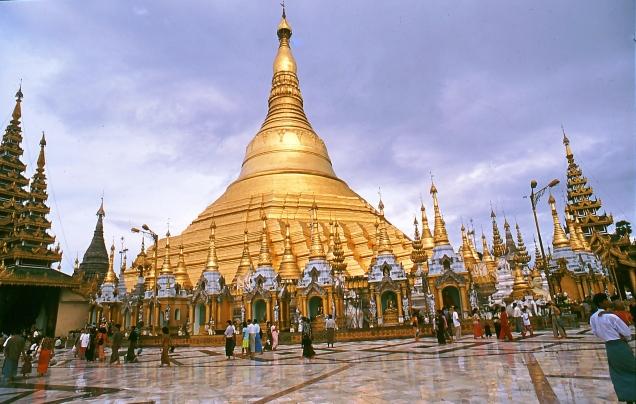 5 pagoda d'oro