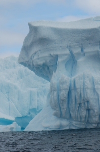 Antartica 11