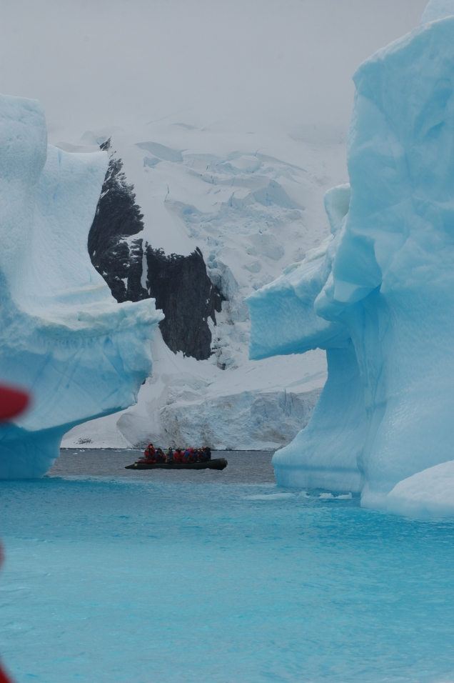 Antartica 12