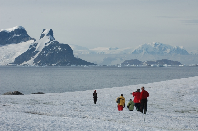 Antartica 18