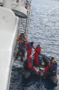 Antartica 5
