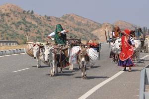 Rabari women